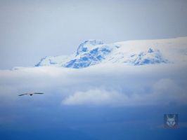 Flying To The Alps by wolfwings1