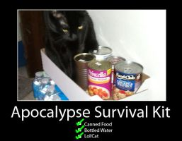 apocalypse survival kit by darkelf19