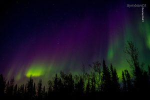 Northern Lights~3 by symbiandj
