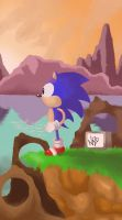 Sonic the hedgehog by NazoZR