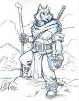 WOLF WARRIOR by Wieringo