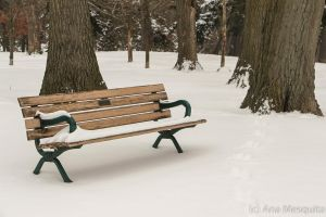 Snowy Bench by AnaMesquitaPhotos