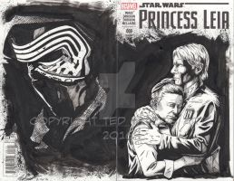 Princess Leia #1 Sketch Cover by tedwoodsart