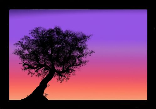 Olive tree at Sunset by Alelwing