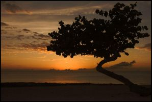 Cayman Sunset by fayerman