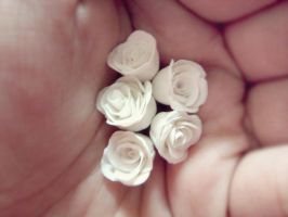 White little roses by Claparo-Sans