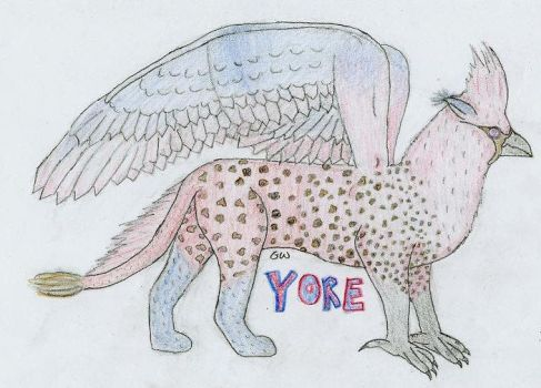 Yore, the gryff by dramakitty