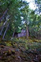 Cave Junction - Cabin in the woods by BloodyLies