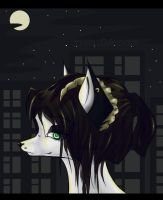 night town - by irriss