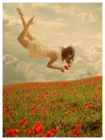 Floating over the Poppy field by KateBloomfield