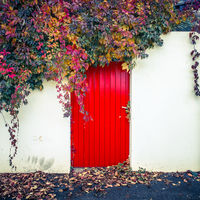 Red Door Fall by Pierre-Lagarde