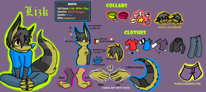 Lizk Reference Sheet by LizkMB