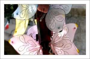 Butterfly wings by MichelleMarie