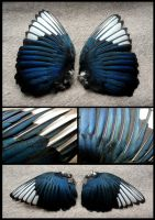 Magpie Wings by CabinetCuriosities
