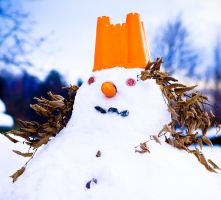 Snowwoman by EvaPolly