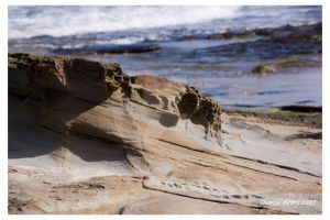 Rock Untitled by ACDCpincushion