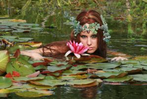 Water Lilies 56 by MarjoleinART-Stock