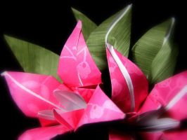 Flowers and Leaves: Origami by whispering-hills