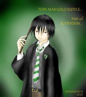 Tom Riddle by Demoneyes14