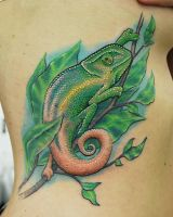 Chameleon Side Piece by joshing88