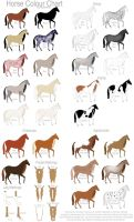 Horse Colour Chart by Gaurdianax