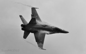 F/A-18C Hornet J-5014 by SindreAHN