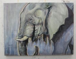 elephant final by xReina
