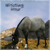 Witching Hour - HEE by ElkRunStables