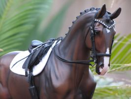 Double Bling Bridle set by GalxeySparrowStudio
