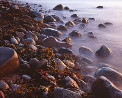 Cobble Beach by EvaMcDermott