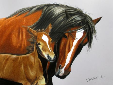 Colored Pencil drawing: Horse with Baby by JasminaSusak