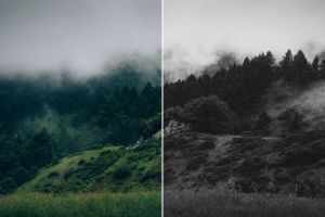 Black and White Lightroom Presets by filtergrade