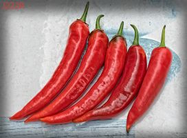 Red Hot Chili Peppers by J222R