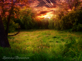 Meadow of Heaven by Schnitzelyne