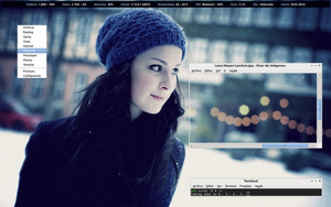 ArchLinux Screenshot January 2014 by Juanma90