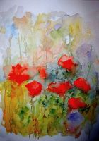 Poppies by lapoall