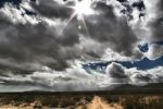 The Desert Lives by dwingephotography