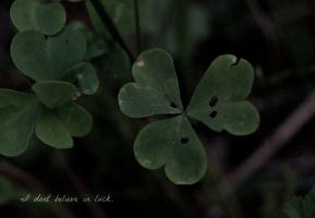 I don't believe in luck. by stonesourgirl