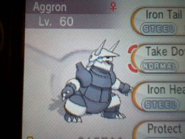 Aggron by NFSWorldGamer