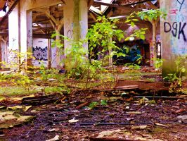 abandoned furniture plants VIII by tussy1483