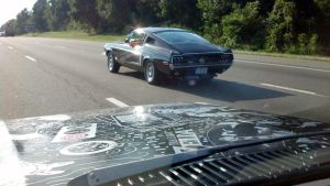Fastback Mustang Sighting by AllHailZ