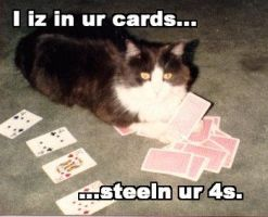 LOLcats - I iz in ur cards... by mamaslyth
