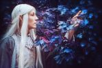Celeborn - The Lord of the Rings by LeoTakanashi