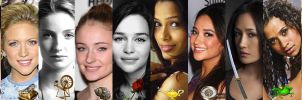 Disney Princesses Banner by ~nickelbackloverxoxox by nickelbackloverxoxox