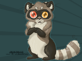 Racoon by orum-the-cat