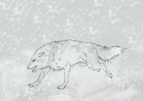 Snow Wolf by Separate-cell