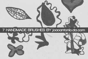 handmade brushes by JoaoAntonio