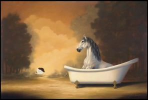 Horse Bath by LindaRHerzog