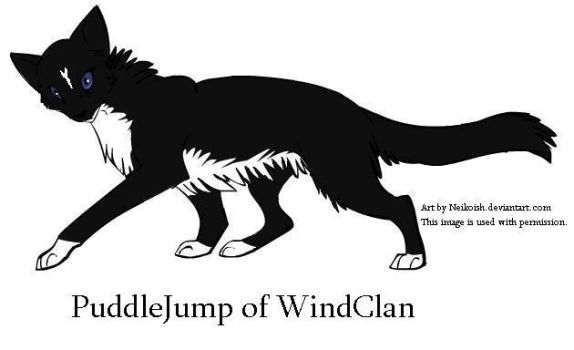 Puddlejump of Windclan by Seri-goyle