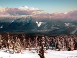 Timberline Mt. Hood by unspoken411